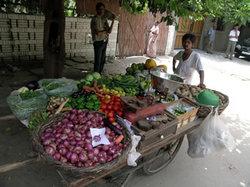 野菜の引き売り