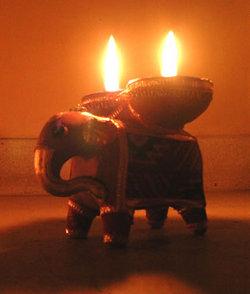 ディワリ:象