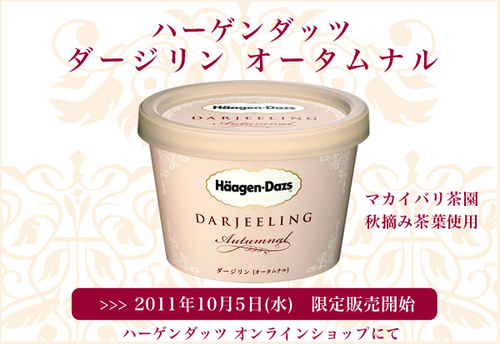 Haagendazs_blog