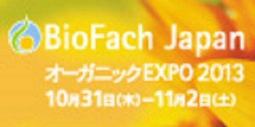 Banner_2013_120x602