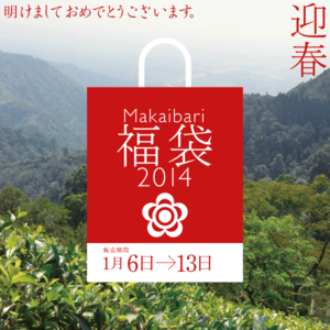 Fukubukuro01_2