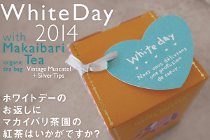 Whiteday01